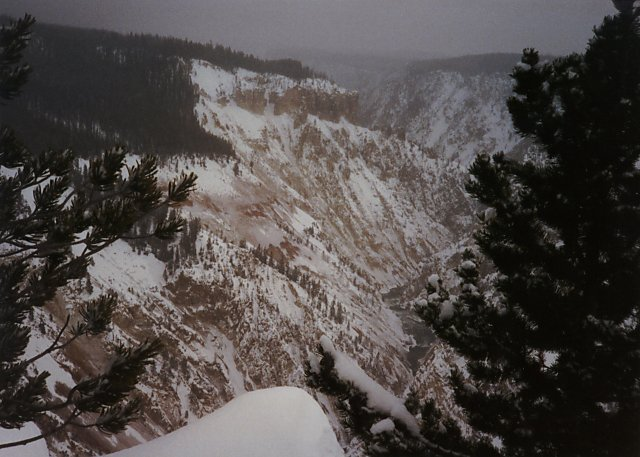 Grand Canyon of the Yellowstone, Winter