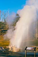 Riverside Geyser, Yellowstone