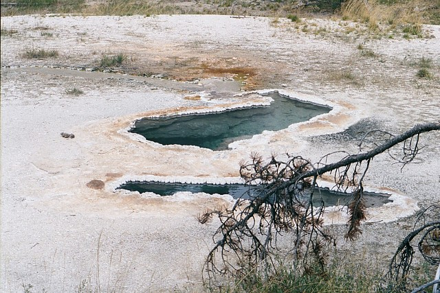 Spring Near Buffalo Pool, Lower Geyser Basin, Yellowstone
