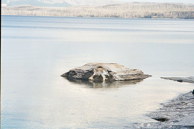 Fishing Cone, West Thumb, Yellowstone