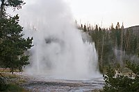 Grotto Fountain Geyser, Yellowstone