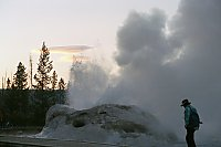 Grotto Geyser, Upper Geyser Basin, Yellowstone